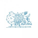 Vignette10-Epure-Brijatoff